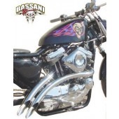 Radial Sweepers For 2004-2006 Sportsters, Chrome