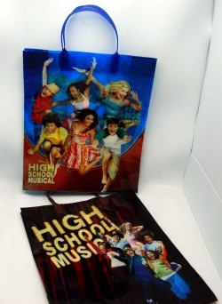 "HSMBAG6 - HSM 12.5"" Large Gift Bags (12pcs @ $2.00/pc)"