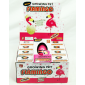"CZHATCH21 - Hatching Flamingo Eggs in 4"" Box (12pcs @ $1.00/pc)"