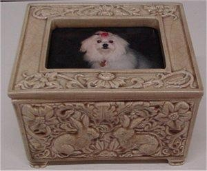 Photo Frame Box w/Lid Rabbit Design 4.75x6.75""