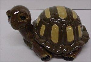 "Turtle Box 6""L"