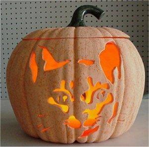 """Carved Cat Pumpkin  9""""t"""