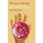 The Joy of Being: Advanced Kum Nye Practices For Relaxation, Integration And Concentration