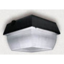 DF 8870 Outdoor Light