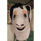 blklt white donkey face